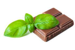 Chocolate bars with basil Royalty Free Stock Photo