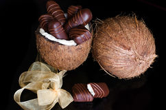 Chocolate bars filled with coconut. Homemade chocolate bars filled with coconut. Served in a half of a coconut on  a black background Royalty Free Stock Images