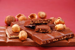 Chocolate bars with hazelnuts Stock Image