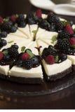 Chocolate berries cheesecake stock image