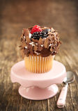 Chocolate and berry cupcake Royalty Free Stock Photo