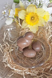 Chocolate bird and eggs Stock Photo
