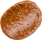 Chocolate Biscuit Stock Photography