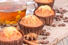 Chocolate biscuit cakes Royalty Free Stock Images