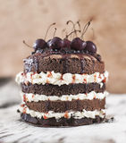 Chocolate biscuit cherry cake stock photography