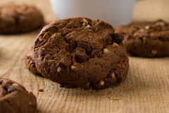 Chocolate biscuit cookies Royalty Free Stock Photo