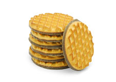 Chocolate biscuits Stock Image