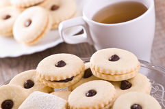 Chocolate biscuits. Stock Photography