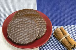 Chocolate biscuits with cinnamon sticks Stock Images
