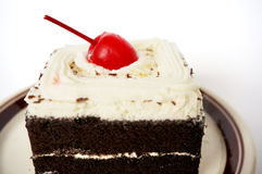 Chocolate black forest cake Royalty Free Stock Images