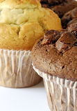 Chocolate and blueberry muffins Royalty Free Stock Photo