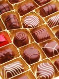 Chocolate bon bons Stock Photos