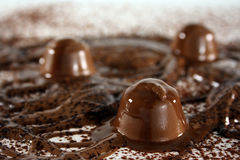 Chocolate bonanza Stock Photography
