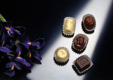 Chocolate. Bonbons. Still life of bonbons with flowers Stock Photography