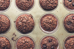 Chocolate bran muffins with cherries, in old, grunge looking, tin tray. Top view Royalty Free Stock Photography