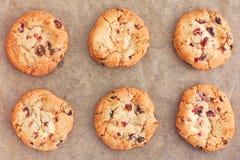 Chocolate branco caseiro delicioso Chip Cranberry Cookies fotografia de stock royalty free