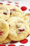 Chocolate branco Chip Cranberry Cookies fotografia de stock