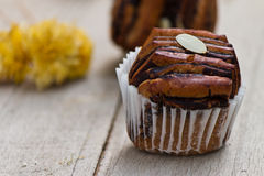 Chocolate bread muffin Stock Images
