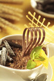Chocolate breakfast cereal Stock Photography