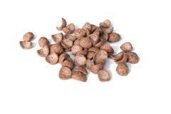 Chocolate breakfast cereal Stock Photo