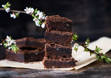 Chocolate brownie cake Royalty Free Stock Images