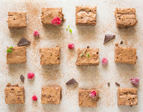 Chocolate brownie. Is favorite dessert of every chocoholic. Raspberry and mint perfectly accentuate the taste of chocolate Royalty Free Stock Images