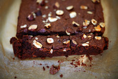 Chocolate brownie with hazelnuts, sliced, detail Stock Photography