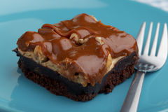 Chocolate brownie on a plate Royalty Free Stock Photos
