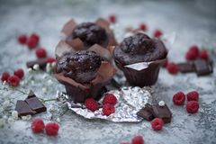 Chocolate brownie and raspberry Stock Photography