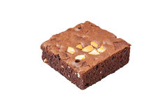 A chocolate Brownie Royalty Free Stock Photography