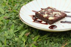 Chocolate Brownies cake on a white plate. Stock Photos
