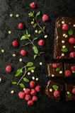 Chocolate brownies with mint. Raspberry and white chocolate Royalty Free Stock Images