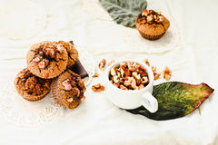 Chocolate brownies muffins with walnuts, healthy vegan baking Royalty Free Stock Photography