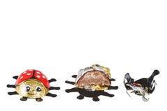 Chocolate bugs Stock Photos