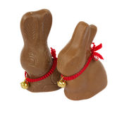 Chocolate bunnies Royalty Free Stock Photos
