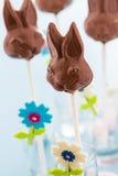 Chocolate bunnies Stock Images
