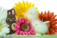 Chocolate bunny Stock Images