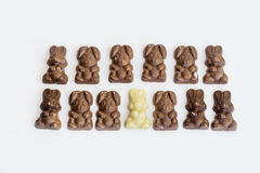 Chocolate bunny candies Stock Photos