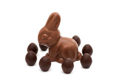 Chocolate bunny with chocolate eggs isolated Royalty Free Stock Photos