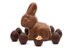 Chocolate bunny with chocolate eggs isolated Royalty Free Stock Photo