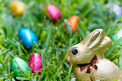 Chocolate bunny and eggs. Chocolate Easter bunny and foil covered eggs in grass Stock Photo