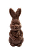 Chocolate bunny isolated Stock Photography