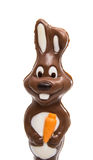 chocolate bunny isolated Stock Photos