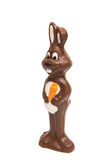 chocolate bunny isolated Stock Images