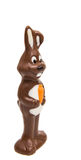 chocolate bunny isolated Stock Image