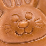 Chocolate Bunny Macro Foto de Stock