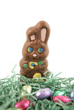Chocolate Bunny In Nest Stock Photography