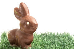 Chocolate bunny rabbit on grass Stock Photos