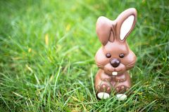 Chocolate bunny sitting in the grass Stock Photo