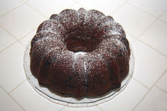 Chocolate bunt cake Stock Image